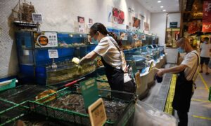 Photo of BCs Wild Seafood Exports Caught in Beijings COVID-19 Panic
