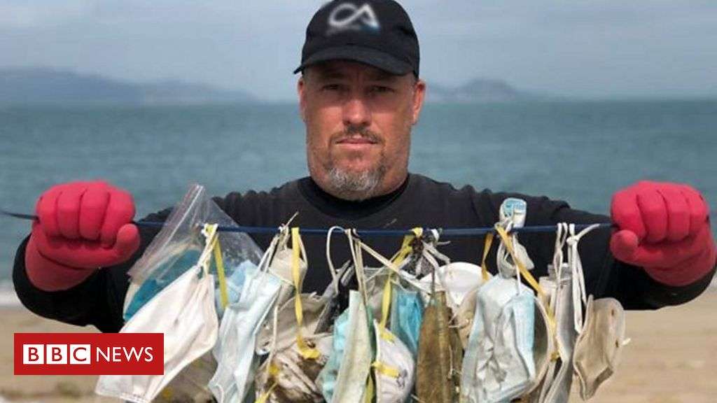 Photo of Coronavirus: 'The masks you throw away could end up killing a whale'