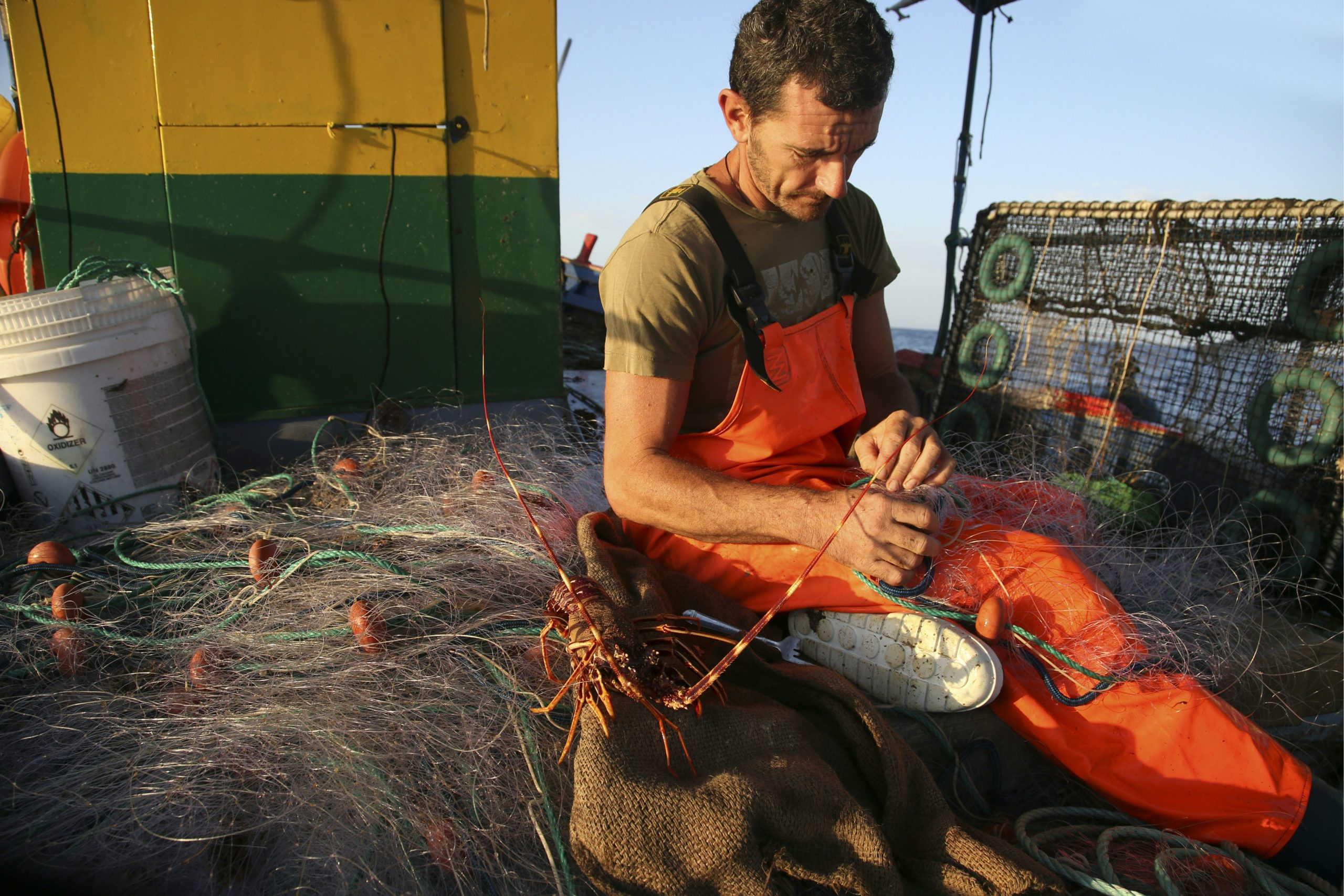 Photo of EU gives in on lobsters to strike trade deal with Trump