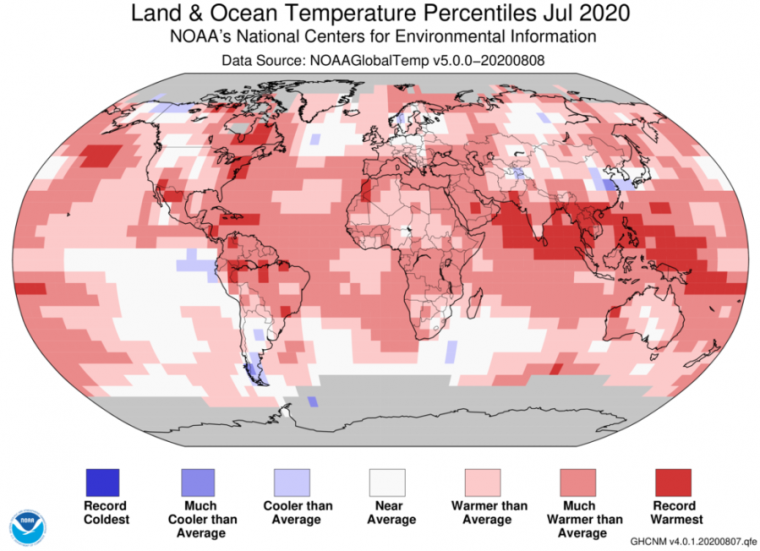 Photo of July was a hot one, but heres what NOAA sees ahead for the US