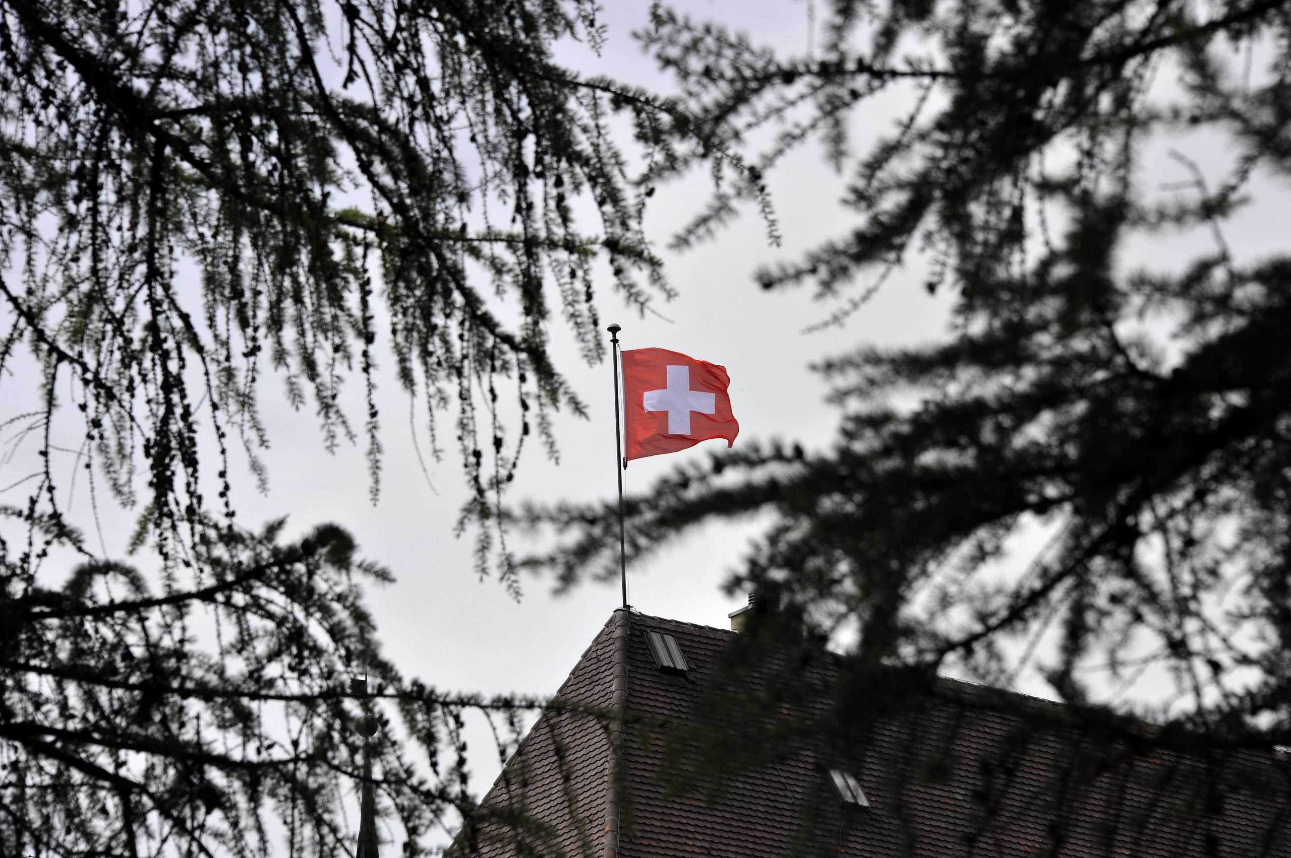 Photo of Switzerland rejects ending free movement with EU: exit poll