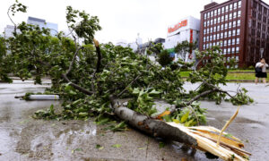Photo of Typhoon Lashes South Korea After Battering Japanese Islands
