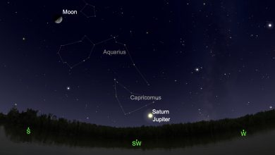 Photo of Great Conjunction LIVE stream: How to watch Jupiter and Saturn align 'exceptionally close'