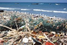 Photo of 'Wave of plastic' washes up on Brazil beach