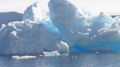 Photo of Climate crisis: Global ice loss is speeding up, study finds