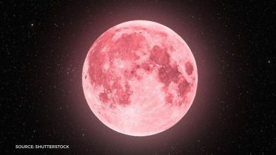 Photo of Pink supermoon: What is April's full moon and when will it appear?