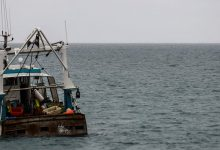 Photo of Fishing chaos: Guernsey hits out at neighbours Jersey as new row threatens to erupt