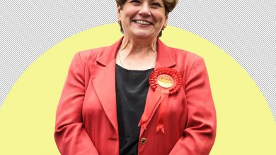 Photo of Really?! Emily Thornberry says UK can't agree big trade deals as 'EU did it for us'